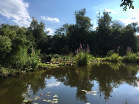 Seminarhaus Jonathan Philosophiepark Eindrücke